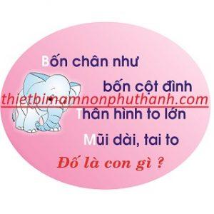 CD 104